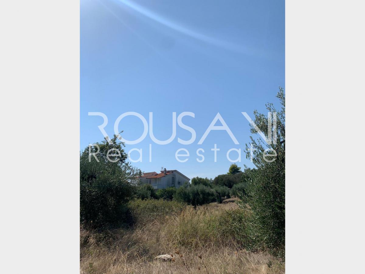 property-thumbs-carousel
